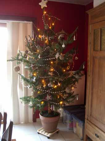 kerstboom1.jpg